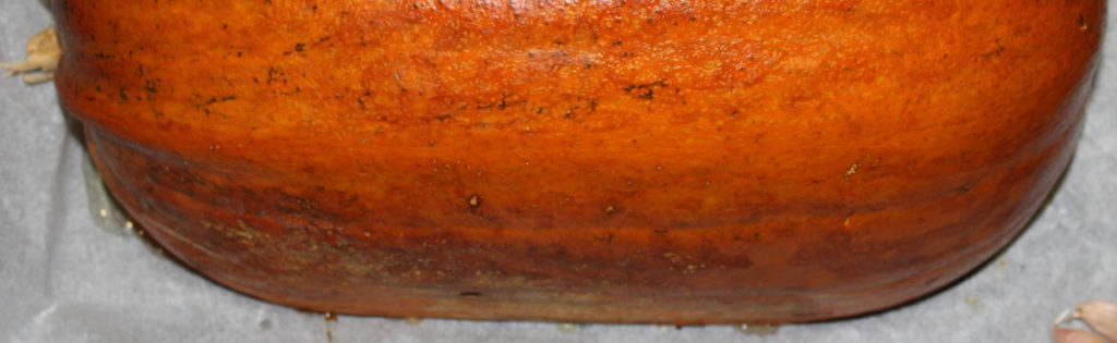 Hjemmelavet græskarpuré og sprøde græskarkerner - find opskrifterne på danishthings.com © Christel Danish Things